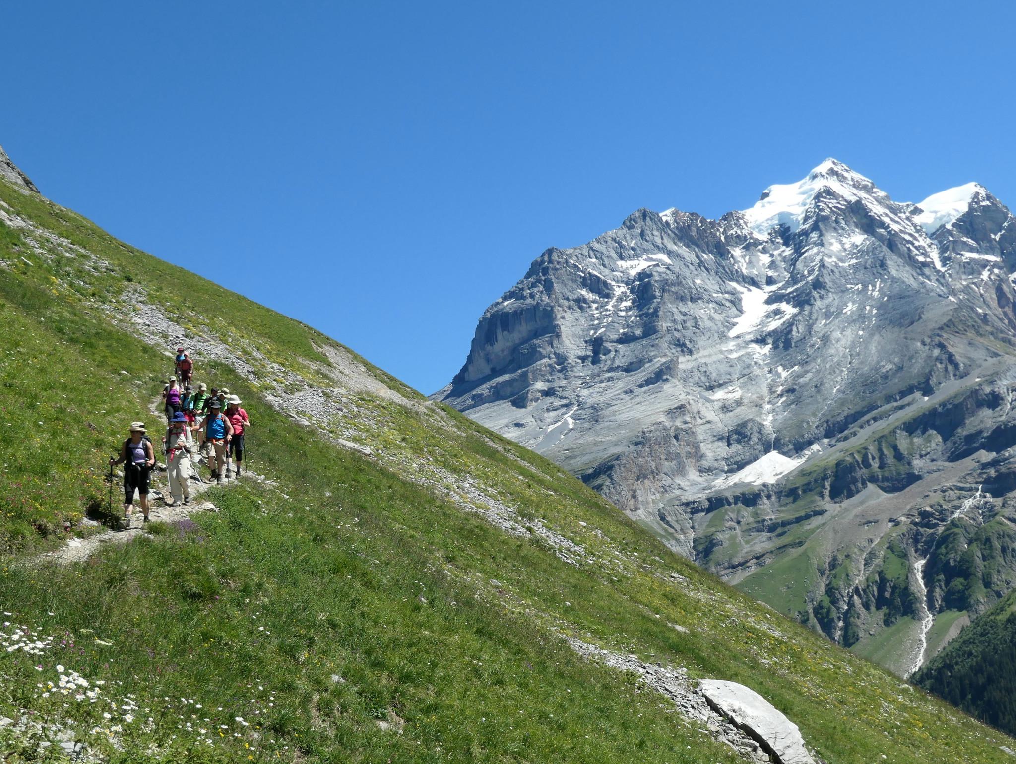 Oberland bernois