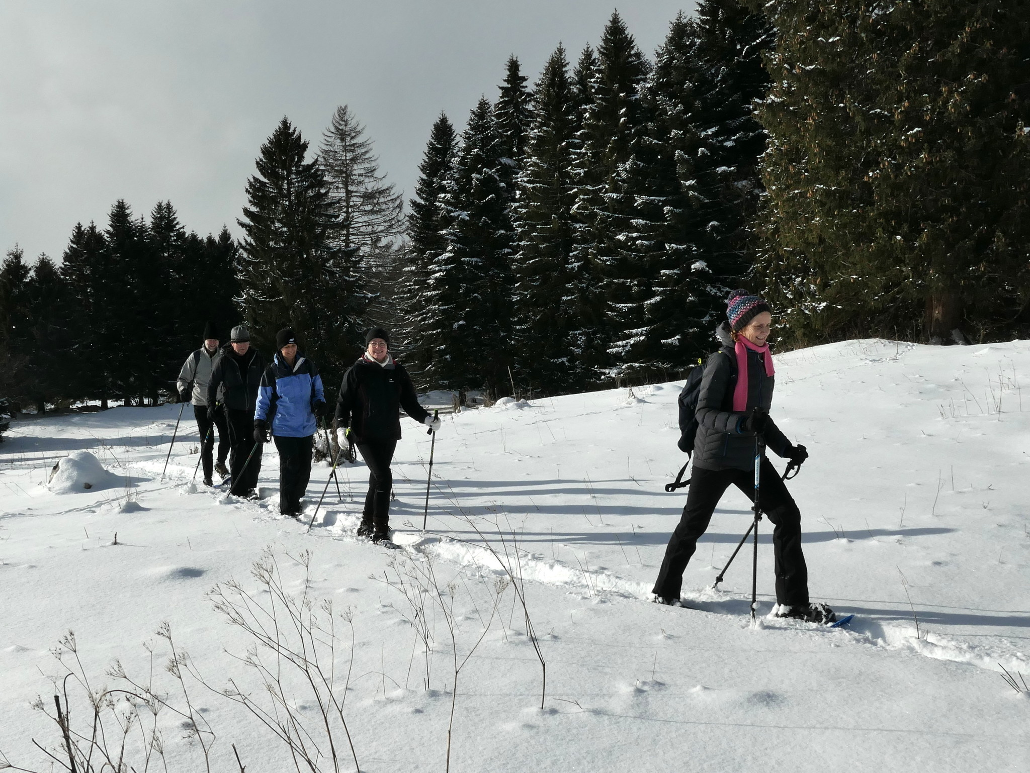 Snow-shoe introduction