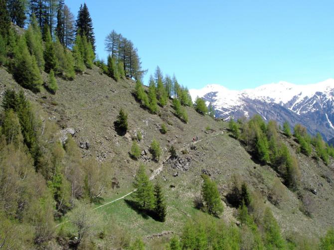 Vallée de Conches : chemin d'altitude de Bellwald à Münster