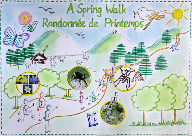 "Secrets of nature… a guided spring ""walk"" online!"