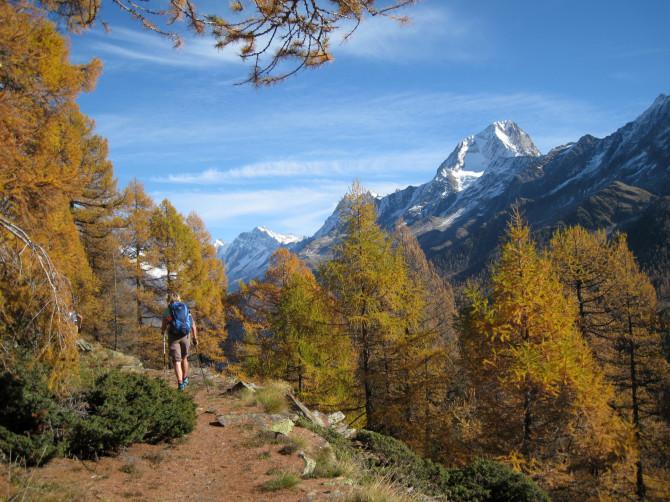 Lötschental panorama trails